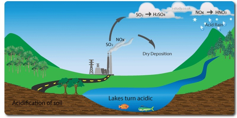 Modern Graphic of Acid Rain Cycle